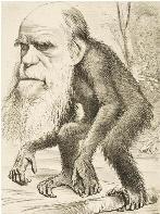 Παρανοημένος Δαρβίνος